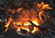 IER_0564 vreugdewipper in het vuur
